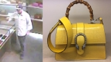 Rare purse worth $24K stolen from Gucci store