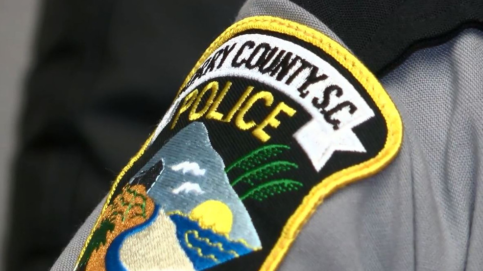 Four former Horry County officers charged with misconduct in