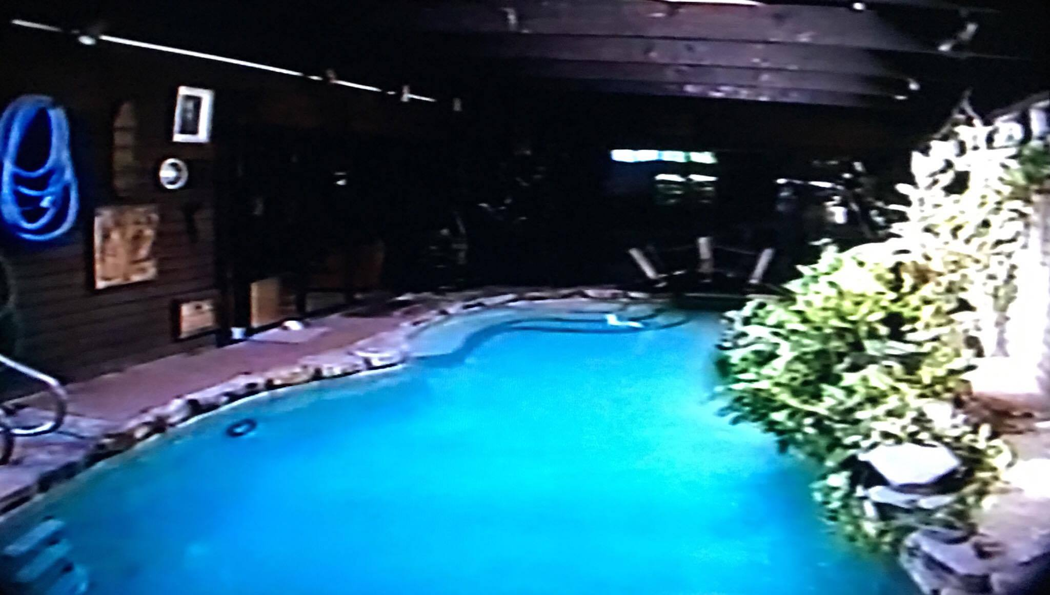 Indoor Outdoor Pool   Leslie Eglash.jpg