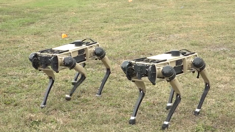 robot dogs.PNG